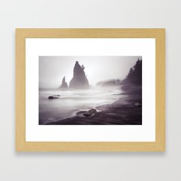 Misty Beach Framed Art Print