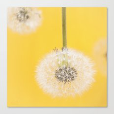 Whishes on yellow Canvas Print