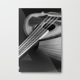 Mandolin Portrait 3 Metal Print