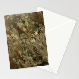 Pine and bokeh II Stationery Cards