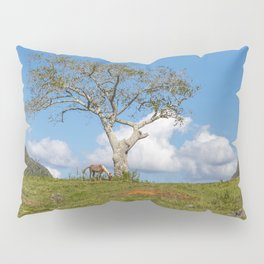 Single tree in Vinales Valley, Cuba Pillow Sham