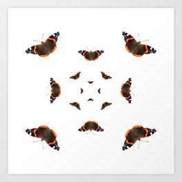 "Butterflies of the specie ""Vanessa atalanta"" Art Print"