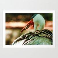 wildlife Art Prints featuring Wildlife by sannngat