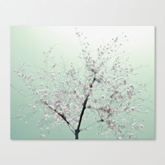 """""""Cherry Mint"""" Canvas Print"""