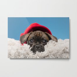 Sulky puppy Metal Print