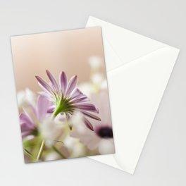 hidden Stationery Cards