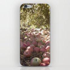 Under the Apple Tree iPhone & iPod Skin