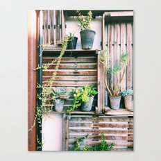 Lucky Penny Canvas Print