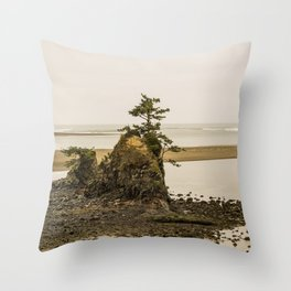Islas en la Costa de Oregon Throw Pillow