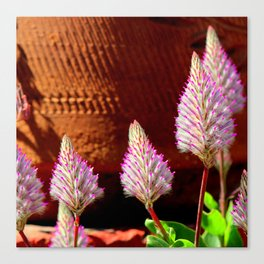 A Flurry Of Furry Flowers Canvas Print