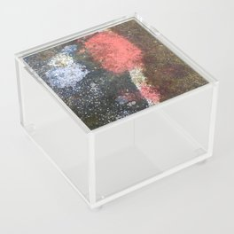 Rusty art rose Acrylic Box