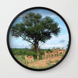 Africa Deers Safari Nature Wall Clock
