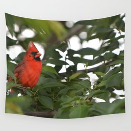 Redd the Cardinal Wall Tapestry