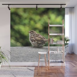 Little Feather Tasting Wall Mural