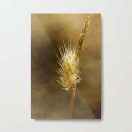 wild flowers #107 Metal Print
