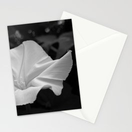 Midnight in the Garden, Moonflower at night Stationery Cards
