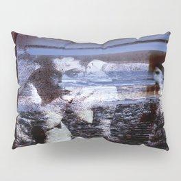 HIDDEN DESIRE Pillow Sham