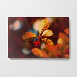 Autumn Berrys Metal Print