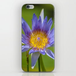 waterlilly iPhone Skin