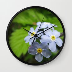 USA - MINNESOTA - Forget-me-nots  Wall Clock