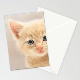 Ginger Kitten Stationery Cards