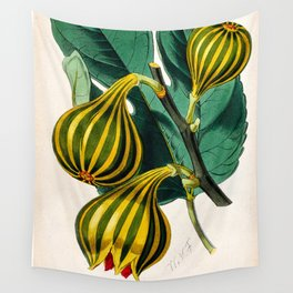 Fig plant, vintage illustration Wall Tapestry