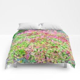 SEPTEMBER SONG Comforters
