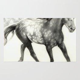Appaloosa Stallion Rug
