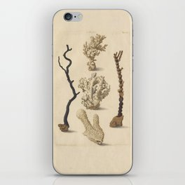 Naturalist Coral iPhone Skin