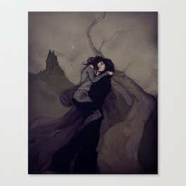 The Darkened Plain Canvas Print