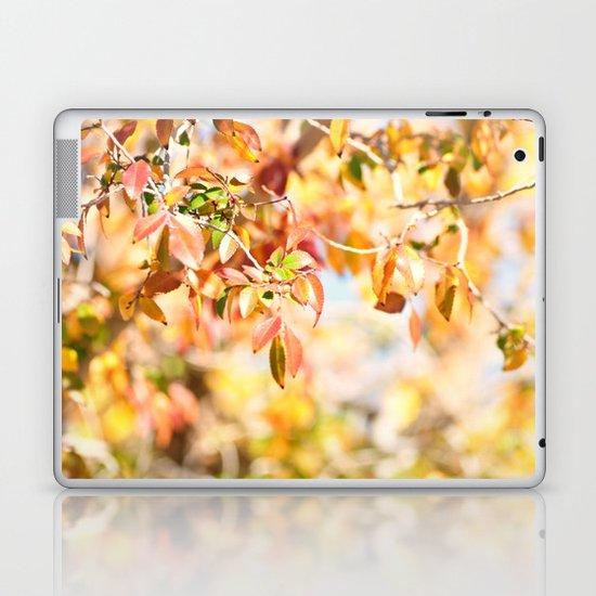 Enchanted... Laptop & iPad Skin