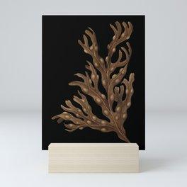Bladderwrack Mini Art Print
