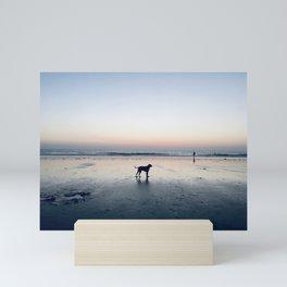 Dog Beach, San Diego California Mini Art Print