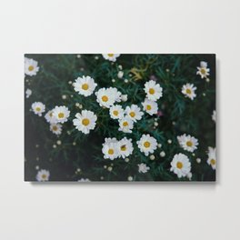 FLOWER SPACE Metal Print