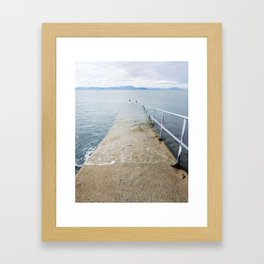 Irish Swim Framed Art Print
