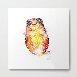 Box Fish Metal Print