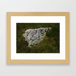 STONES LICHEN NUGGET Framed Art Print