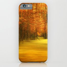 Forest path 63 iPhone Case