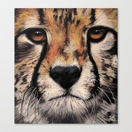 Cheetah, Savannah Hunter Canvas Print