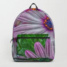 daisy osteospermum Backpack