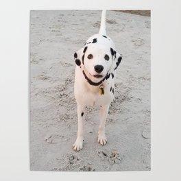 Little Boy on the Beach Poster
