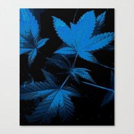 DaPlant - Blue --- #GREENRUSH Canvas Print