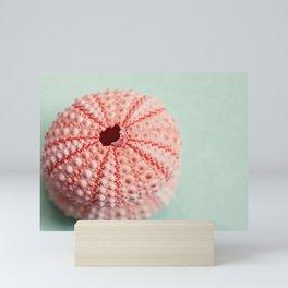 sea urchins series no 1 Mini Art Print