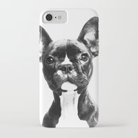 french bulldog iPhone & iPod Cases featuring French BullDog by Maioriz Home