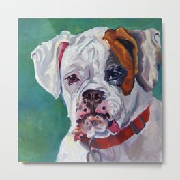 Boxer Dog Portrait Metal Print