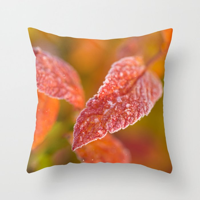 Frosty Red Leaves In The Morning Of October decor buyart society6 throw pillow by Päivi Vikström