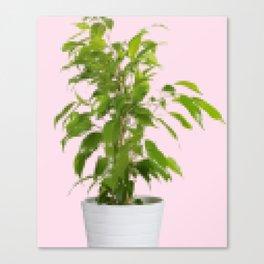 Pixelated Pot Plant Canvas Print