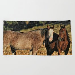 Two Wild Mustang Mares Beach Towel