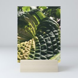 Ridges Mini Art Print