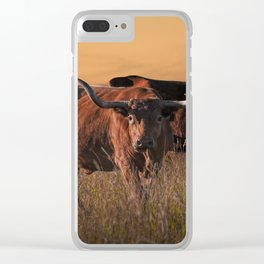Texas Longhorn Steers on the Prairie at Sunset Clear iPhone Case